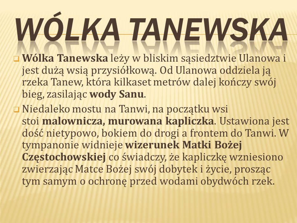  Wólka Tanewska leży w bliskim sąsiedztwie Ulanowa i jest dużą wsią przysiółkową.