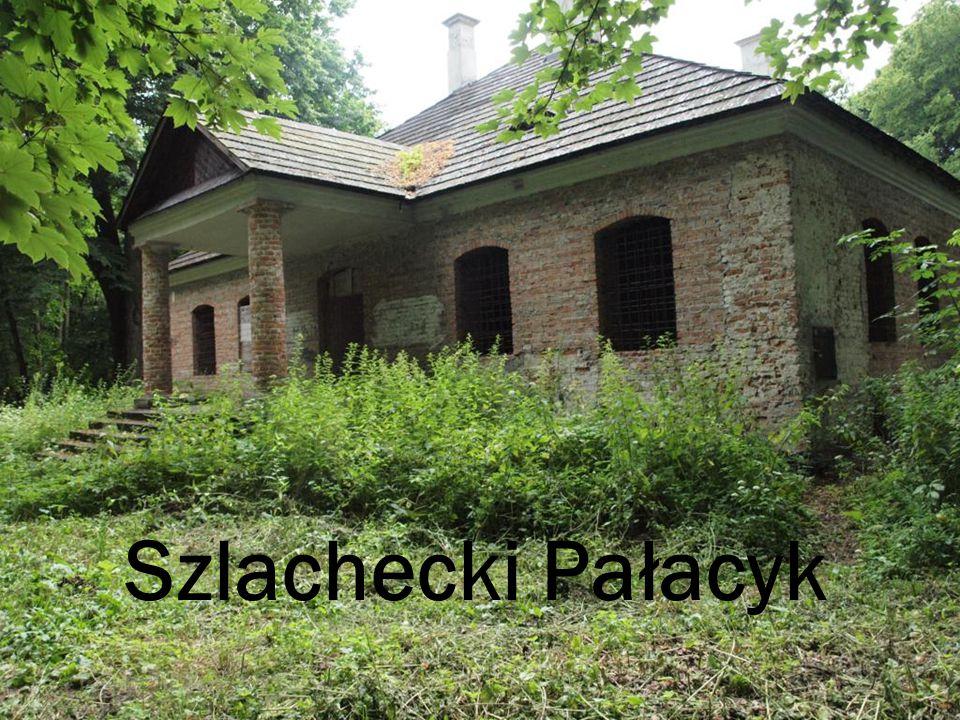 Szlachecki Pałacyk