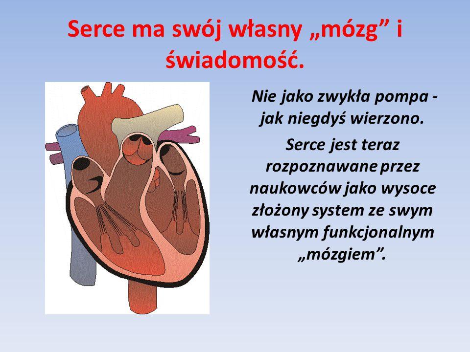 """Serce ma swój własny """"mózg"""" i świadomość. Nie jako zwykła pompa - jak niegdyś wierzono. Serce jest teraz rozpoznawane przez naukowców jako wysoce złoż"""