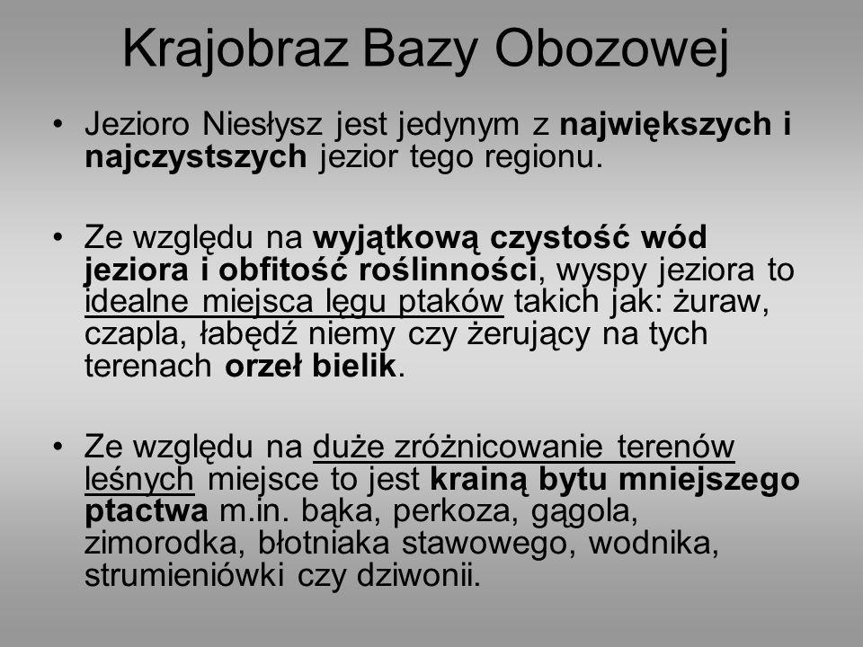 Planowana kadra obozu: Komendant: phm.Małgorzata Wiśniewska Z-ca komendanta: .