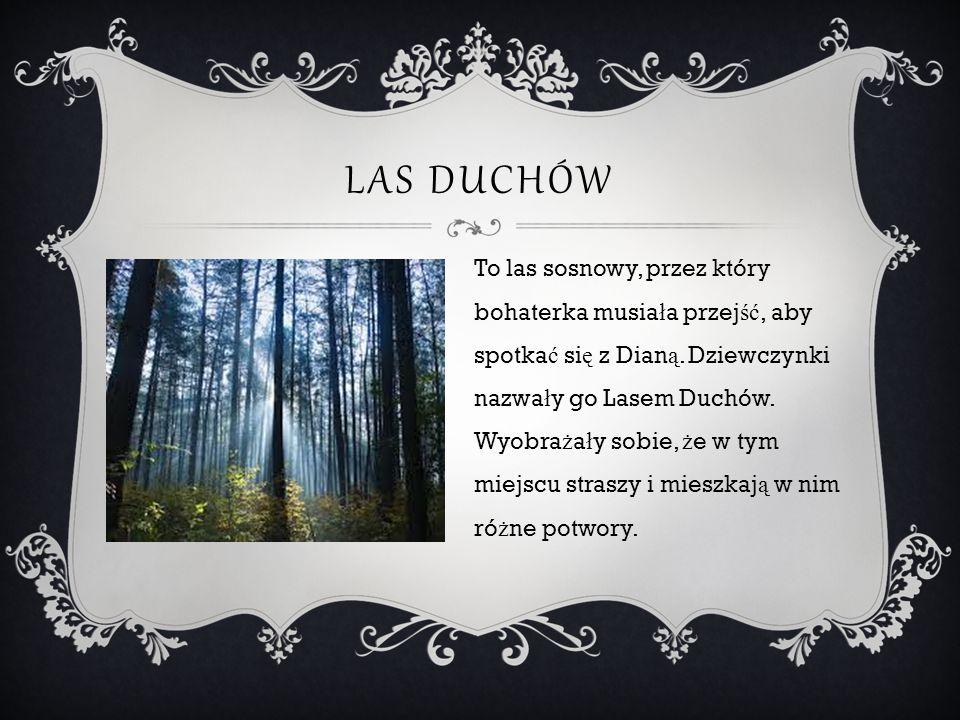 LAS DUCHÓW To las sosnowy, przez który bohaterka musia ł a przej ść, aby spotka ć si ę z Dian ą. Dziewczynki nazwa ł y go Lasem Duchów. Wyobra ż a ł y