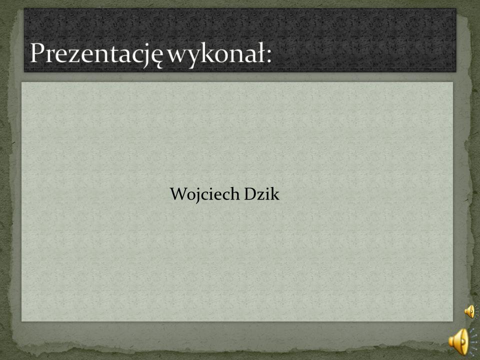 Wojciech Dzik