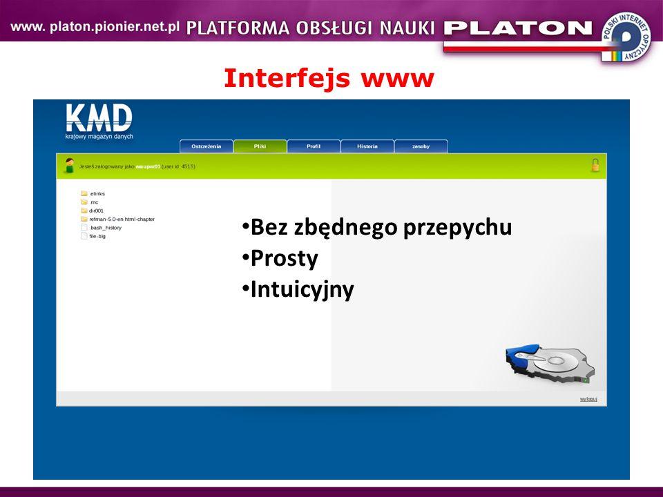 Interfejs www Bez zbędnego przepychu Prosty Intuicyjny