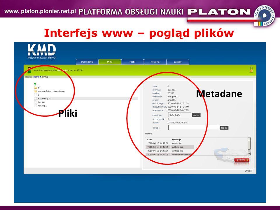 Interfejs www – pogląd plików Pliki Metadane