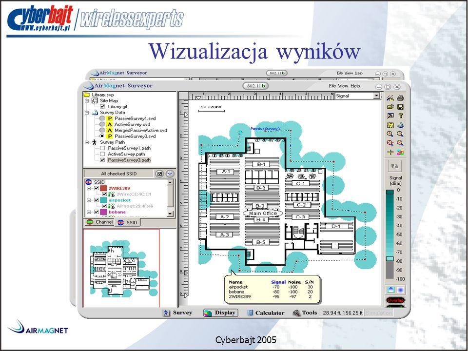 Cyberbajt 2005 Wizualizacja wyników