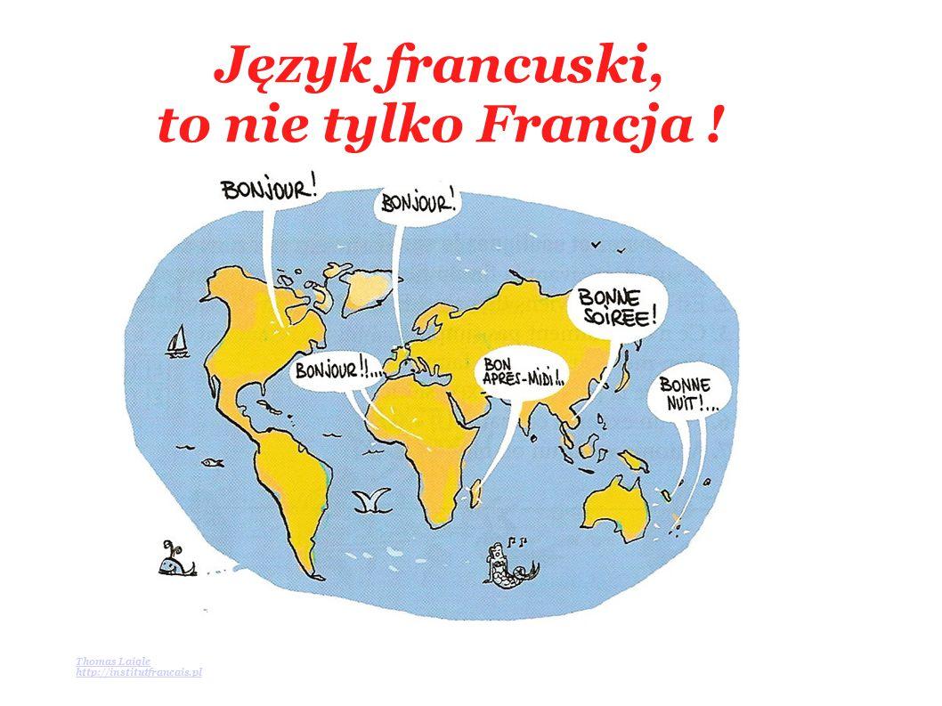 Język francuski to oficjalny język… Organizacji Narodów Zjednoczonych, Unii Europejskiej, NATO, UNESCO, Czerwonego Krzyża, dyplomacji,Poczty, Międzynarodowej Organizacji Pracy, sztuki, sportu, mody, gastronomii, literatury, piosenki, filmu, turystyki, sera, wina, itd.