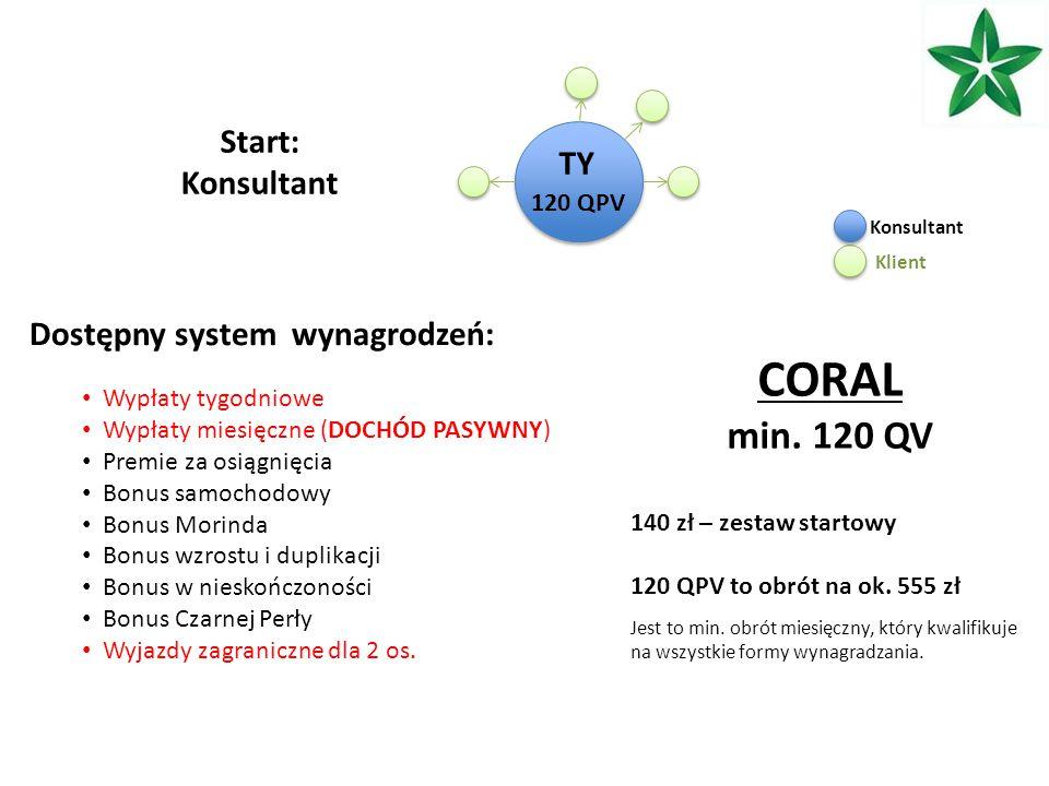 TY 120 QPV Start: Konsultant 140 zł – zestaw startowy 120 QPV to obrót na ok.