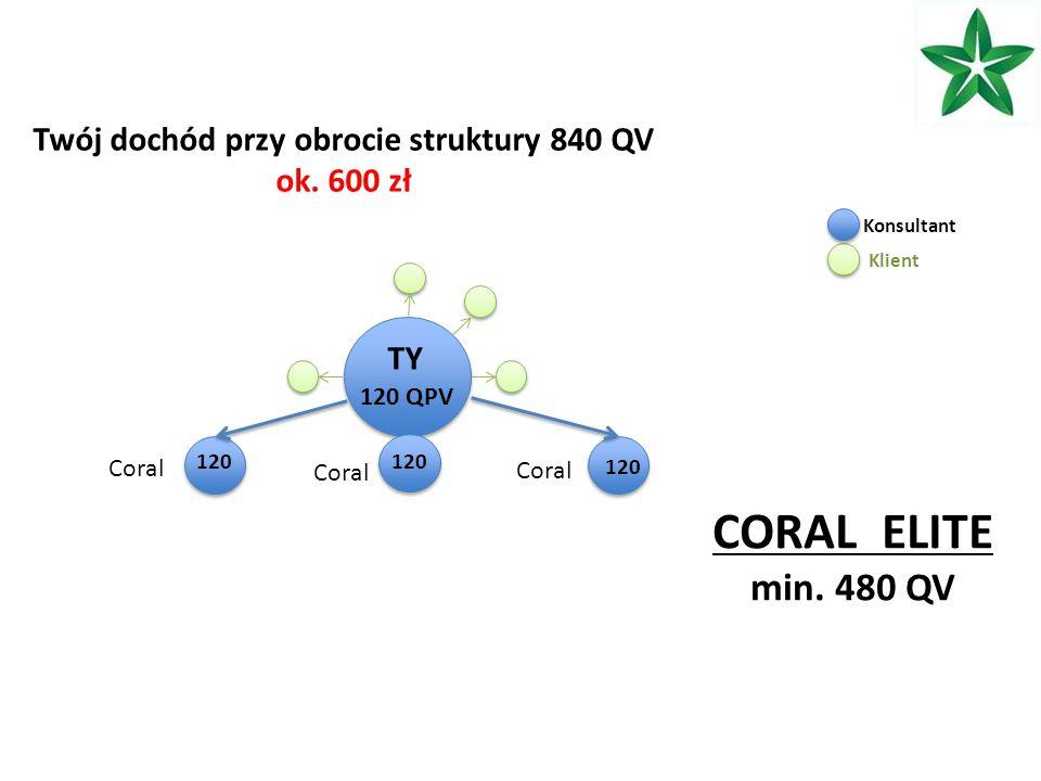 TY 120 QPV 120 Twój dochód przy obrocie struktury 840 QV ok.