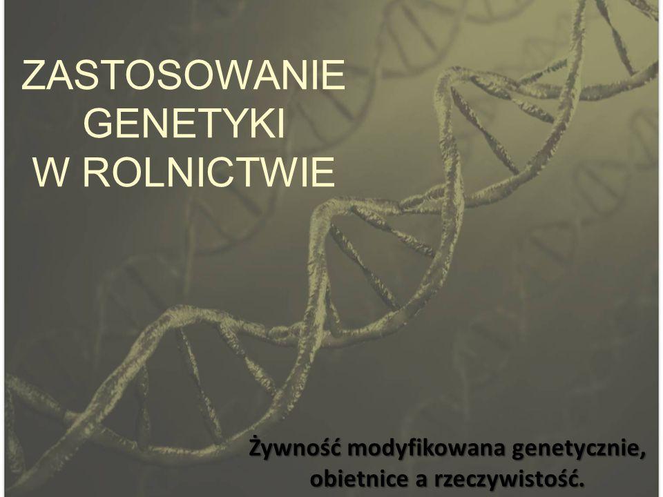 ZASTOSOWANIE GENETYKI W ROLNICTWIE Żywność modyfikowana genetycznie, obietnice a rzeczywistość.