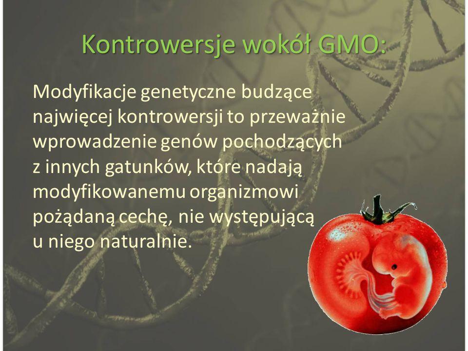 Kontrowersje wokół GMO: Modyfikacje genetyczne budzące najwięcej kontrowersji to przeważnie wprowadzenie genów pochodzących z innych gatunków, które nadają modyfikowanemu organizmowi pożądaną cechę, nie występującą u niego naturalnie.