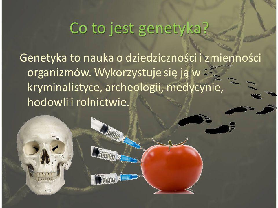 Co to jest GMO.GMO (z ang.