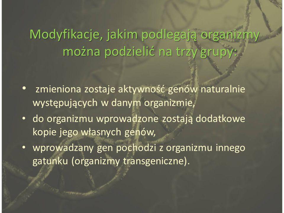 Modyfikacje, jakim podlegają organizmy można podzielić na trzy grupy: zmieniona zostaje aktywność genów naturalnie występujących w danym organizmie, do organizmu wprowadzone zostają dodatkowe kopie jego własnych genów, wprowadzany gen pochodzi z organizmu innego gatunku (organizmy transgeniczne).