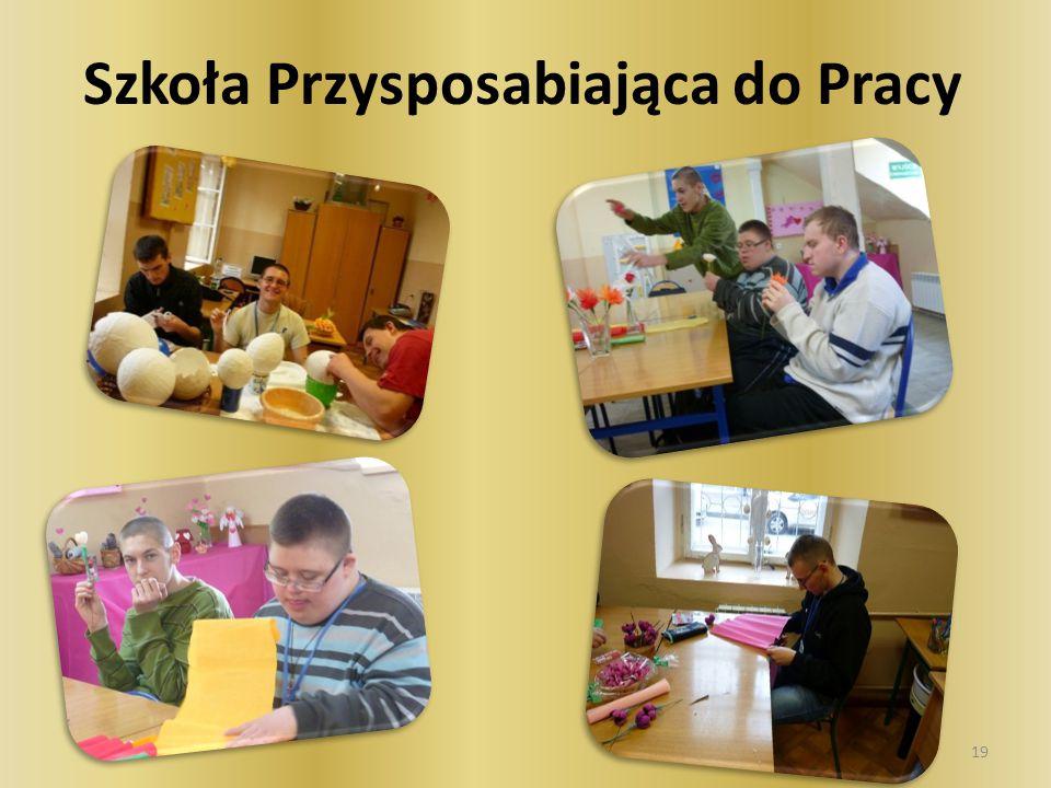 Szkoła Przysposabiająca do Pracy zapewnia kontynuację nauki po ukończeniu gimnazjum dla uczniów z niepełnosprawnością intelektualną w stopniu umiarkowanym i znacznym oraz dla uczniów z niepełnosprawnościami sprzężonymi.