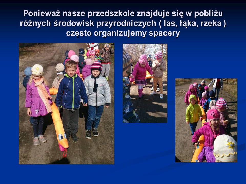 Ponieważ nasze przedszkole znajduje się w pobliżu różnych środowisk przyrodniczych ( las, łąka, rzeka ) często organizujemy spacery