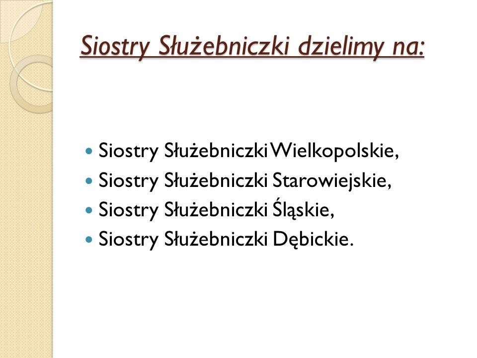 Siostry Służebniczki dzielimy na: Siostry Służebniczki Wielkopolskie, Siostry Służebniczki Starowiejskie, Siostry Służebniczki Śląskie, Siostry Służeb