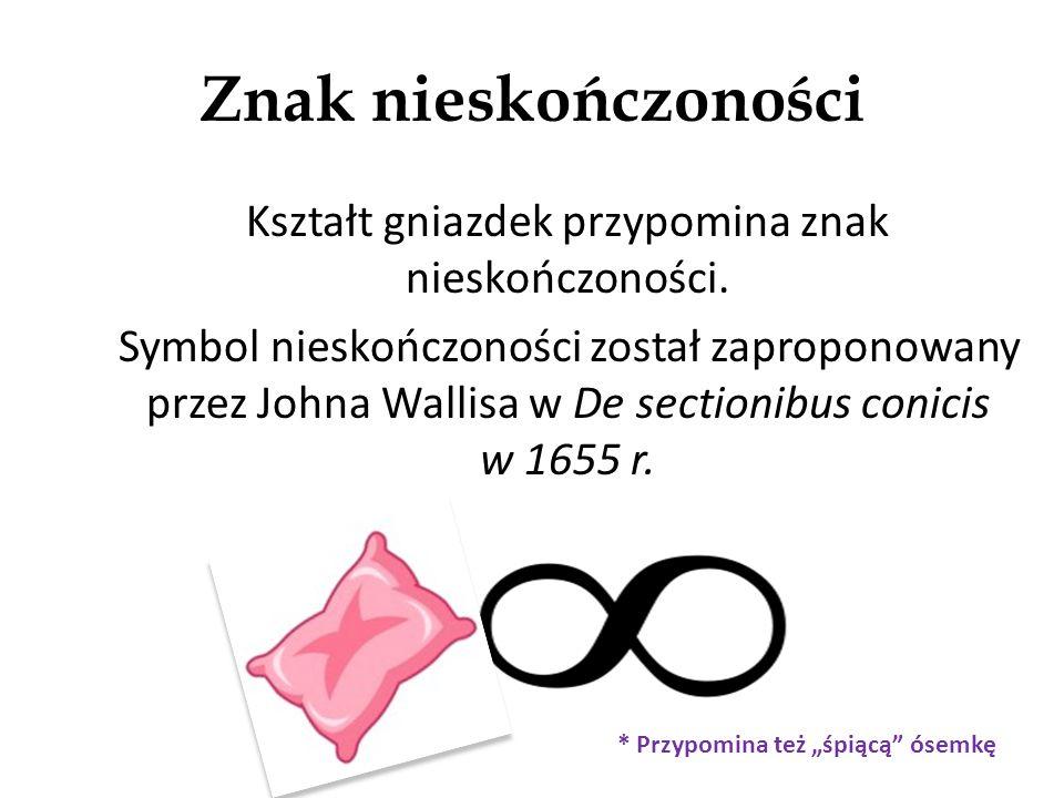 Znak nieskończoności Kształt gniazdek przypomina znak nieskończoności.