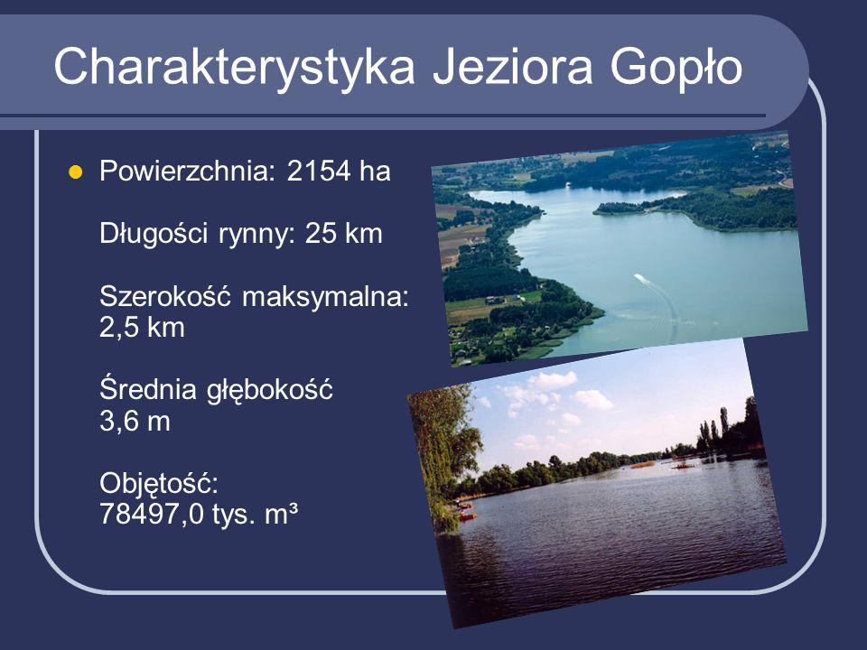 Charakterystyka Jeziora Gopło Powierzchnia: 2154 ha Długości rynny: 25 km Szerokość maksymalna: 2,5 km Średnia głębokość 3,6 m Objętość: 78497,0 tys.