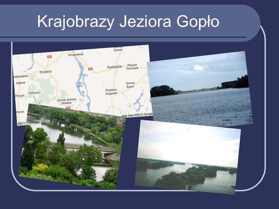 Krajobrazy Jeziora Gopło