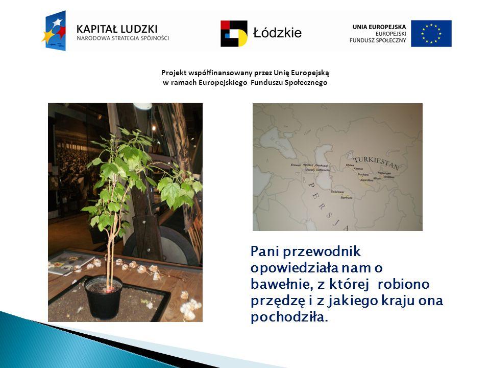 Projekt współfinansowany przez Unię Europejską w ramach Europejskiego Funduszu Społecznego Pani przewodnik opowiedziała nam o bawełnie, z której robio