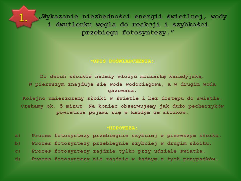 """Bibliografia: Zdjęcie ze strony tytułowej: http://kikimora1978.blogspot.com/2011/04/sonecznik-na-szydeku-opis-i-schemat.html Obiekty """"clipart z programu Microsoft PowerPoint Reszta zdjęć pochodzi ze zbiorów własnych."""