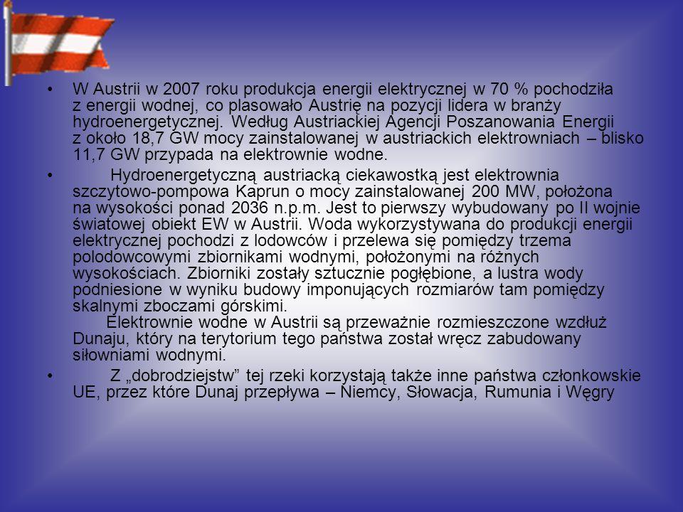 W Austrii w 2007 roku produkcja energii elektrycznej w 70 % pochodziła z energii wodnej, co plasowało Austrię na pozycji lidera w branży hydroenergetycznej.