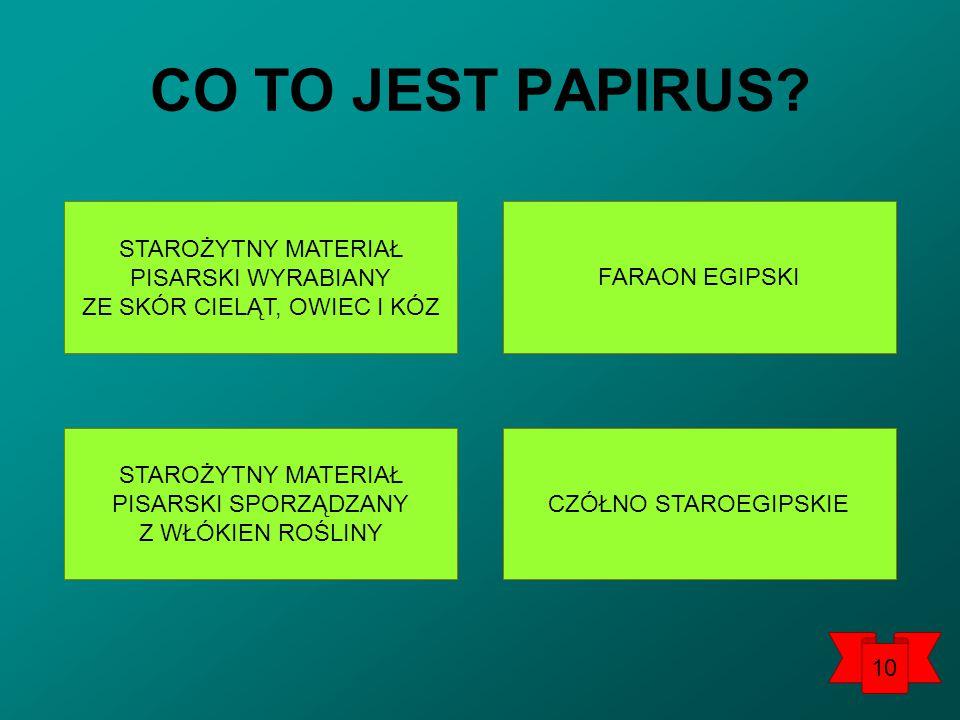 CO TO JEST PAPIRUS.