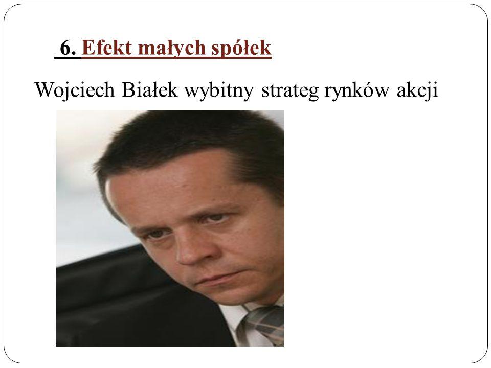 6. Efekt małych spółek Wojciech Białek wybitny strateg rynków akcji