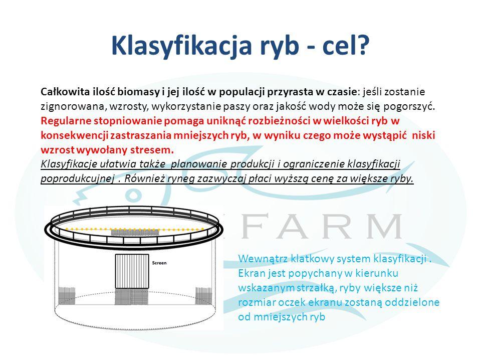 Klasyfikacja ryb - cel? Całkowita ilość biomasy i jej ilość w populacji przyrasta w czasie: jeśli zostanie zignorowana, wzrosty, wykorzystanie paszy o