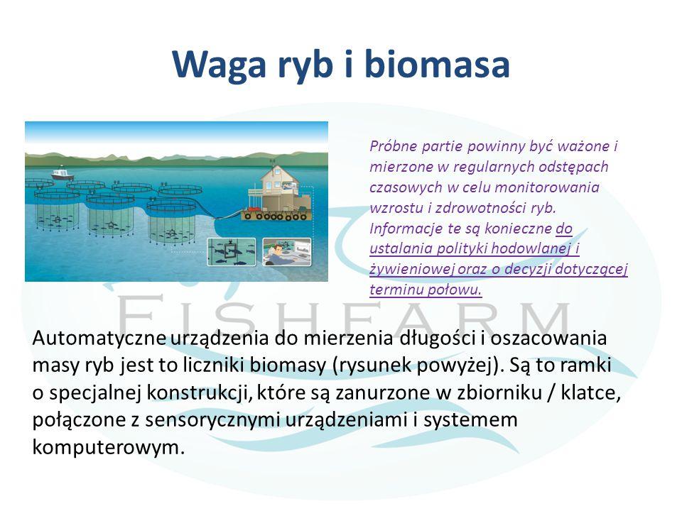 Waga ryb i biomasa Automatyczne urządzenia do mierzenia długości i oszacowania masy ryb jest to liczniki biomasy (rysunek powyżej). Są to ramki o spec