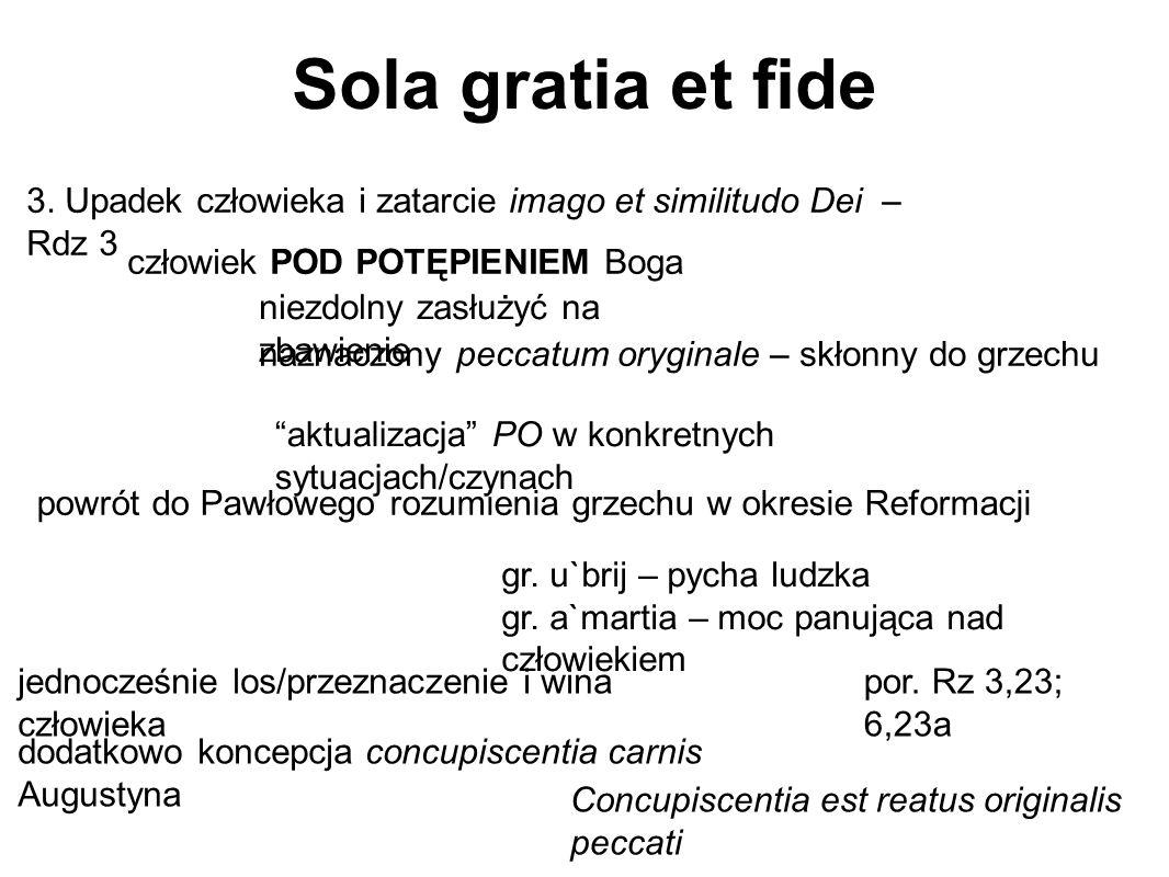"""Sola gratia et fide """"aktualizacja"""" PO w konkretnych sytuacjach/czynach powrót do Pawłowego rozumienia grzechu w okresie Reformacji 3. Upadek człowieka"""