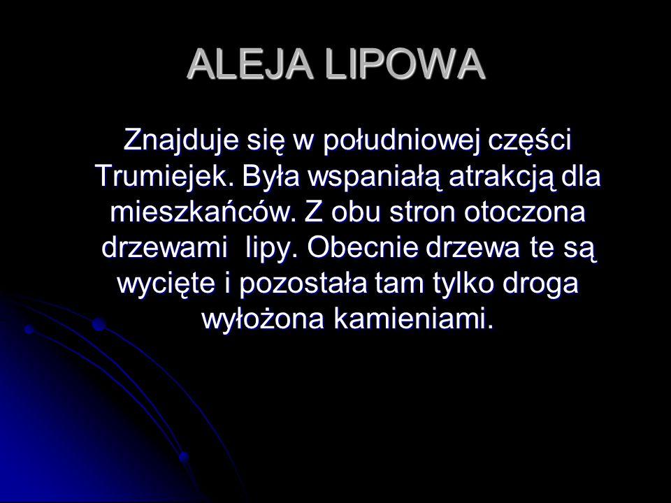 ALEJA LIPOWA Znajduje się w południowej części Trumiejek. Była wspaniałą atrakcją dla mieszkańców. Z obu stron otoczona drzewami lipy. Obecnie drzewa