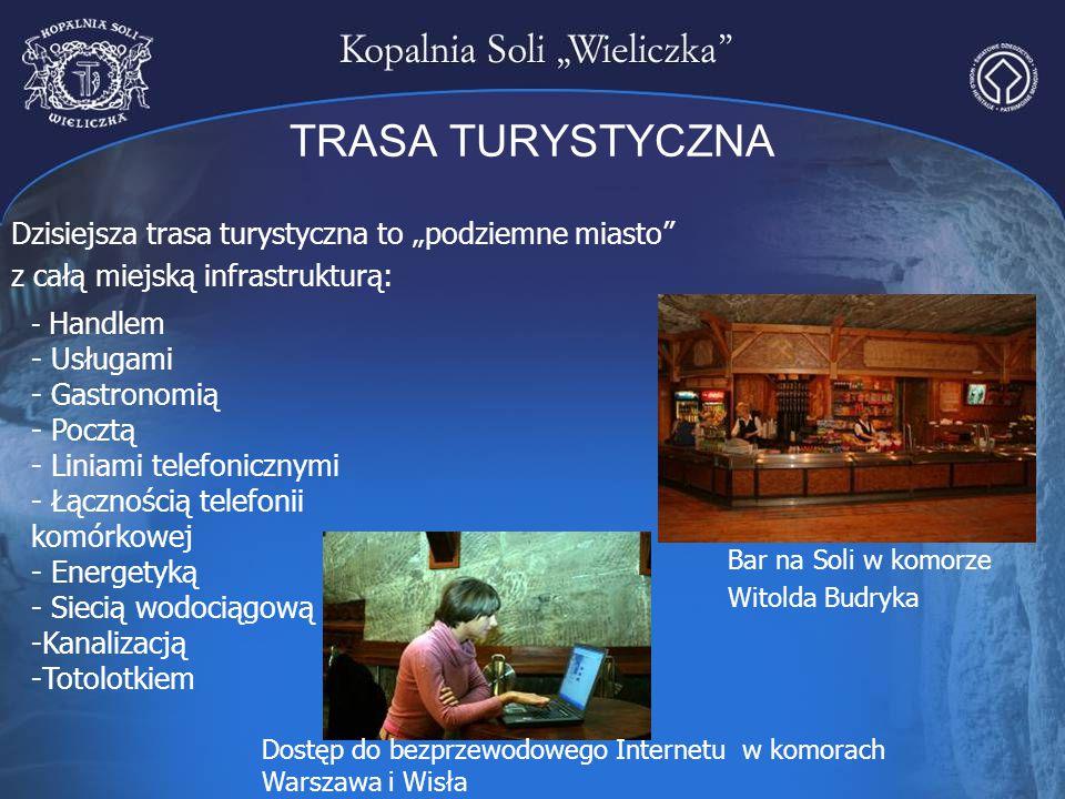 TRASA TURYSTYCZNA - Handlem - Usługami - Gastronomią - Pocztą - Liniami telefonicznymi - Łącznością telefonii komórkowej - Energetyką - Siecią wodocią