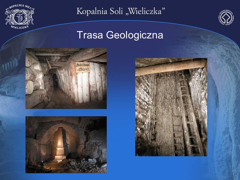 Trasa Geologiczna