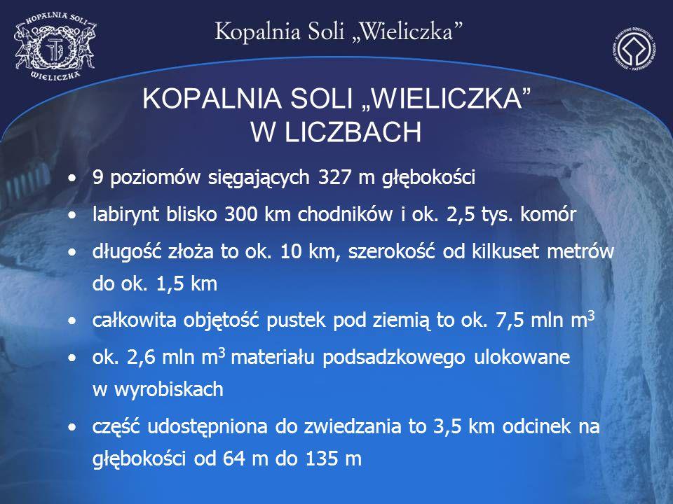 """KOPALNIA SOLI """"WIELICZKA"""" W LICZBACH 9 poziomów sięgających 327 m głębokości labirynt blisko 300 km chodników i ok. 2,5 tys. komór długość złoża to ok"""
