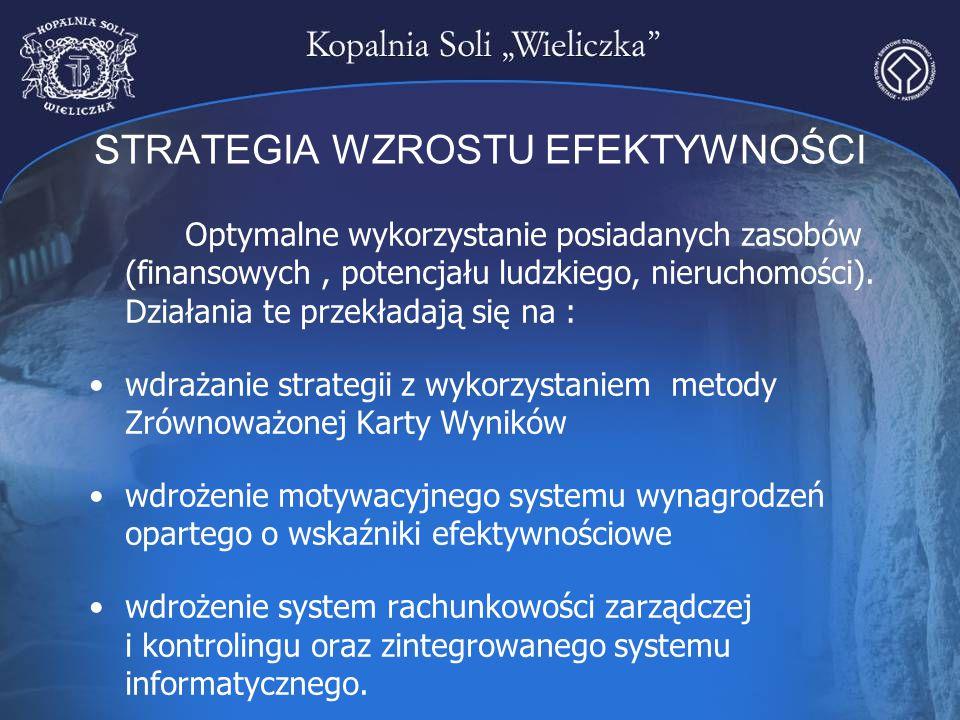 STRATEGIA WZROSTU EFEKTYWNOŚCI Optymalne wykorzystanie posiadanych zasobów (finansowych, potencjału ludzkiego, nieruchomości). Działania te przekładaj