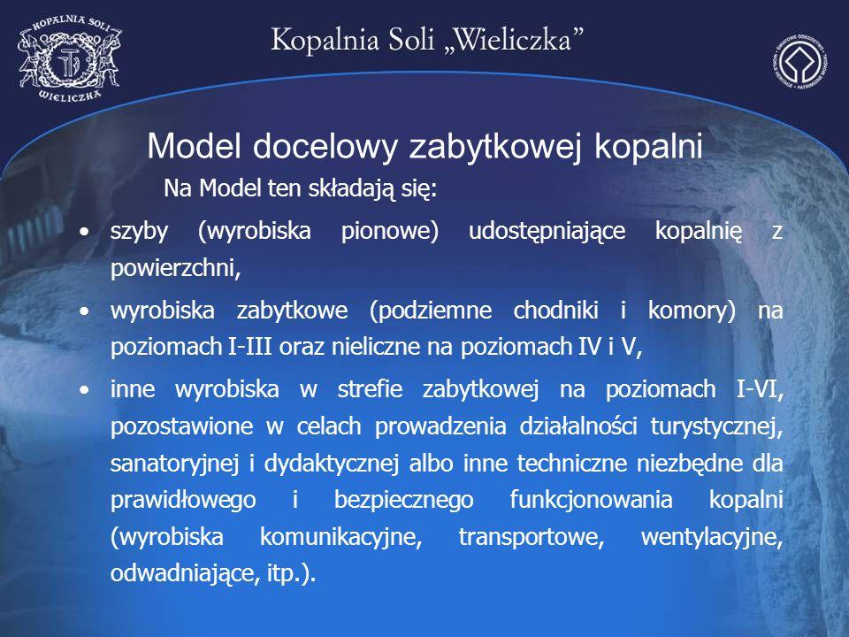 Model docelowy zabytkowej kopalni Na Model ten składają się: szyby (wyrobiska pionowe) udostępniające kopalnię z powierzchni, wyrobiska zabytkowe (pod