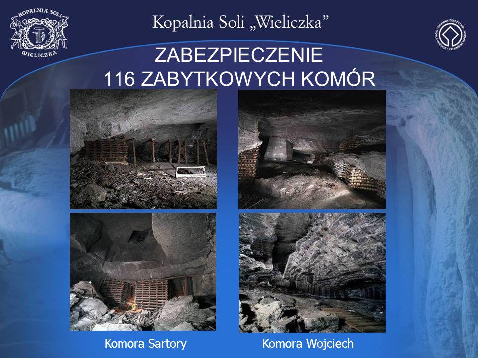 ZABEZPIECZENIE 116 ZABYTKOWYCH KOMÓR Komora SartoryKomora Wojciech