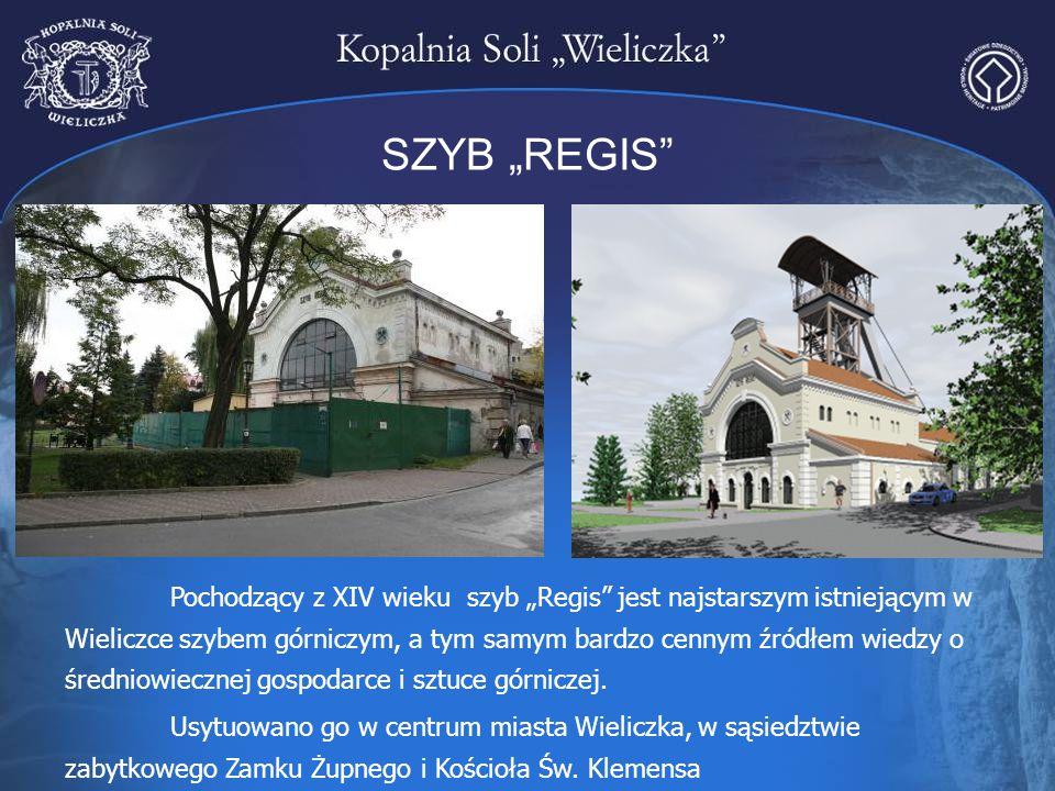 """SZYB """"REGIS"""" Pochodzący z XIV wieku szyb """"Regis"""" jest najstarszym istniejącym w Wieliczce szybem górniczym, a tym samym bardzo cennym źródłem wiedzy o"""