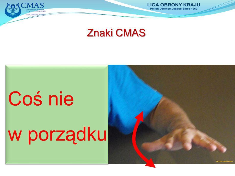 Coś nie w porządku Coś nie w porządku Znaki CMAS