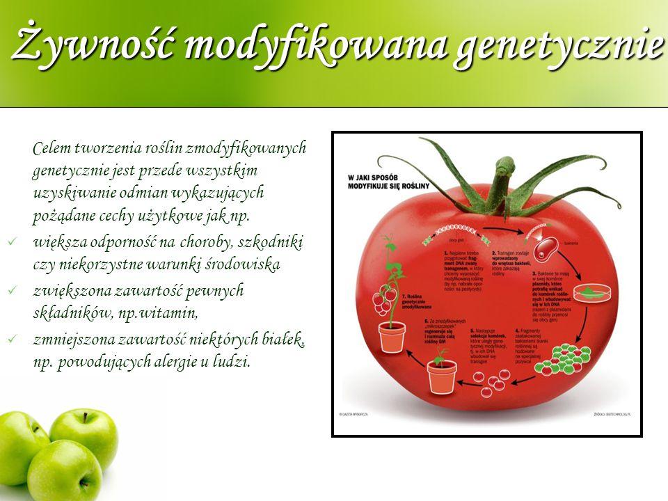 Żywność modyfikowana genetycznie Celem tworzenia roślin zmodyfikowanych genetycznie jest przede wszystkim uzyskiwanie odmian wykazujących pożądane cec