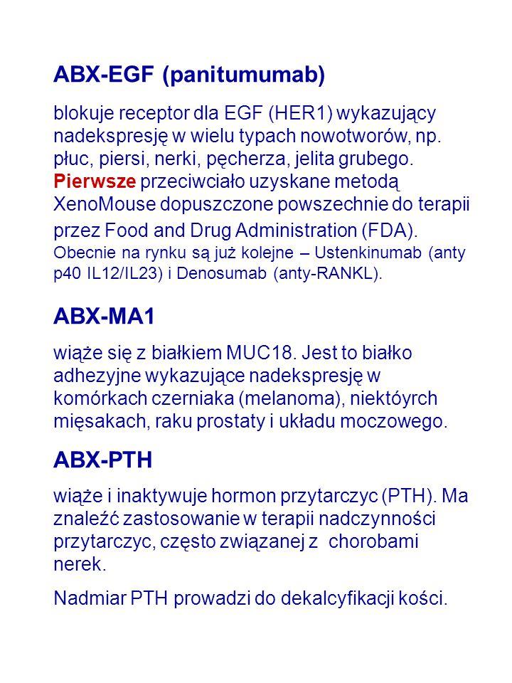 ABX-EGF (panitumumab) blokuje receptor dla EGF (HER1) wykazujący nadekspresję w wielu typach nowotworów, np.