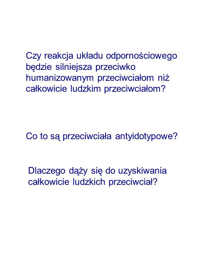 Czy reakcja układu odpornościowego będzie silniejsza przeciwko humanizowanym przeciwciałom niż całkowicie ludzkim przeciwciałom.