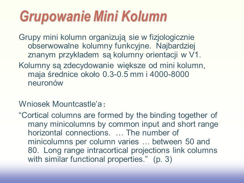 EE141 Grupy mini kolumn organizują sie w fizjologicznie obserwowalne kolumny funkcyjne.