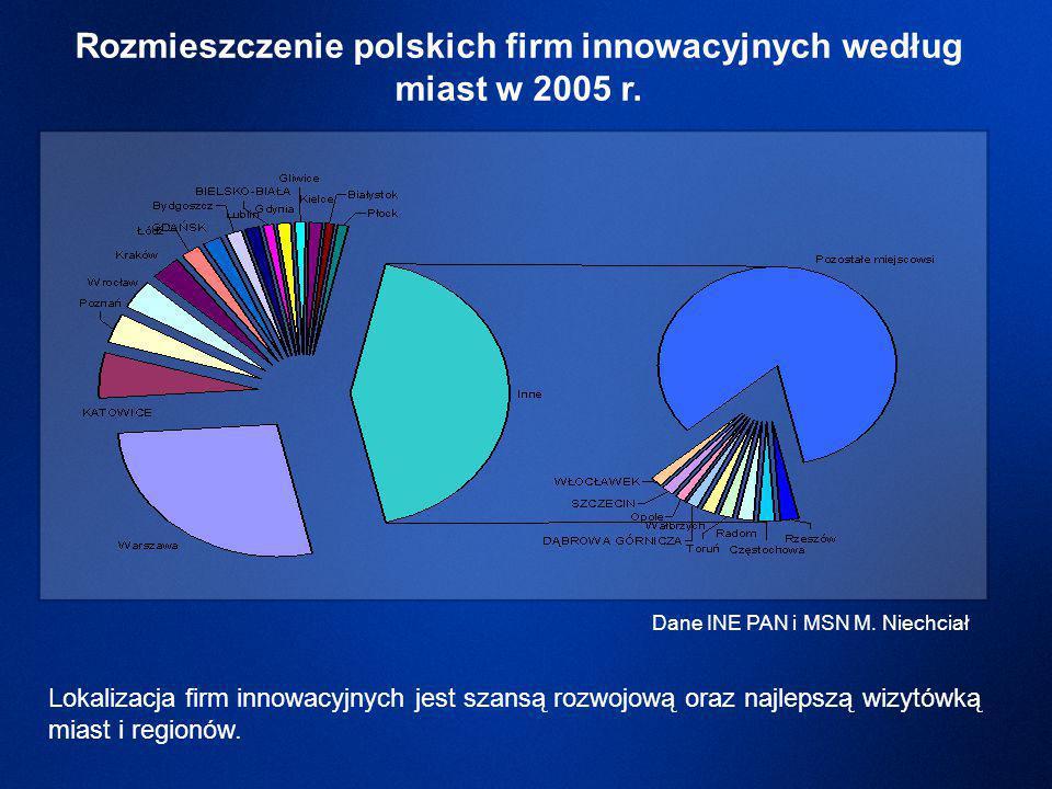 Rozmieszczenie polskich firm innowacyjnych według miast w 2005 r.