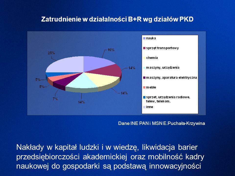 Nakłady w kapitał ludzki i w wiedzę, likwidacja barier przedsiębiorczości akademickiej oraz mobilność kadry naukowej do gospodarki są podstawą innowacyjności Dane INE PAN i MSN E.Puchała-Krzywina Zatrudnienie w działalności B+R wg działów PKD