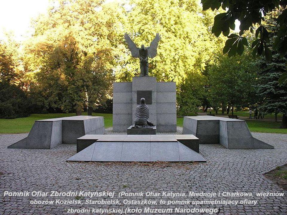 Na głównym placu Ostrowa Tumskiego przy placu Kościelnym naprzeciw kościoła św. Krzyża w Wrocławiu znajduje się barokowa figura Św. Jana Nepomucena po