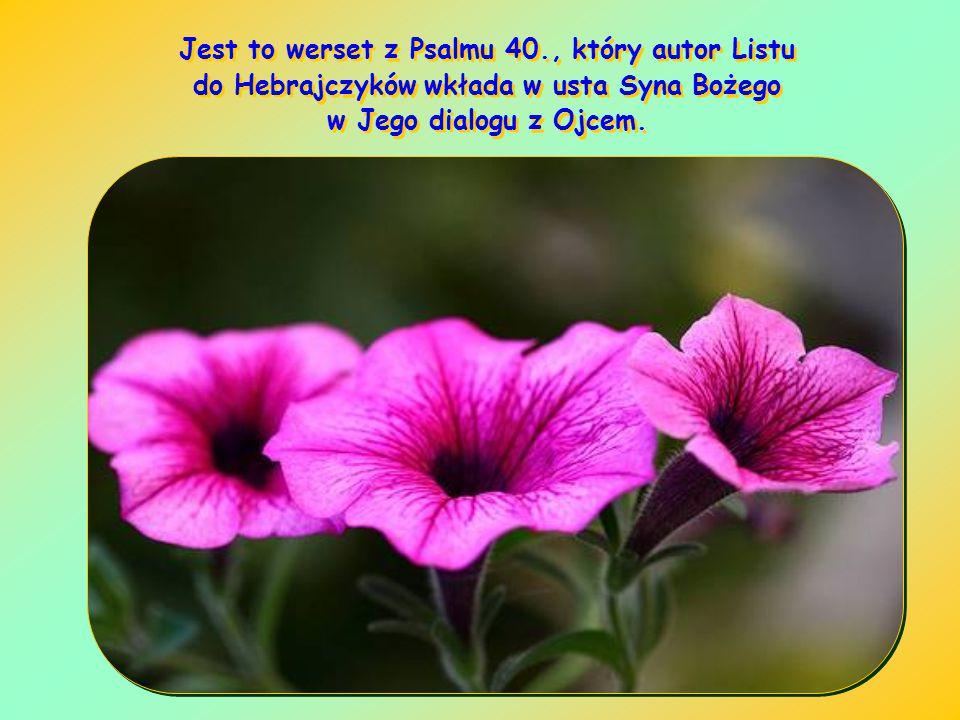 Jest to werset z Psalmu 40., który autor Listu do Hebrajczyków wkłada w usta Syna Bożego w Jego dialogu z Ojcem.