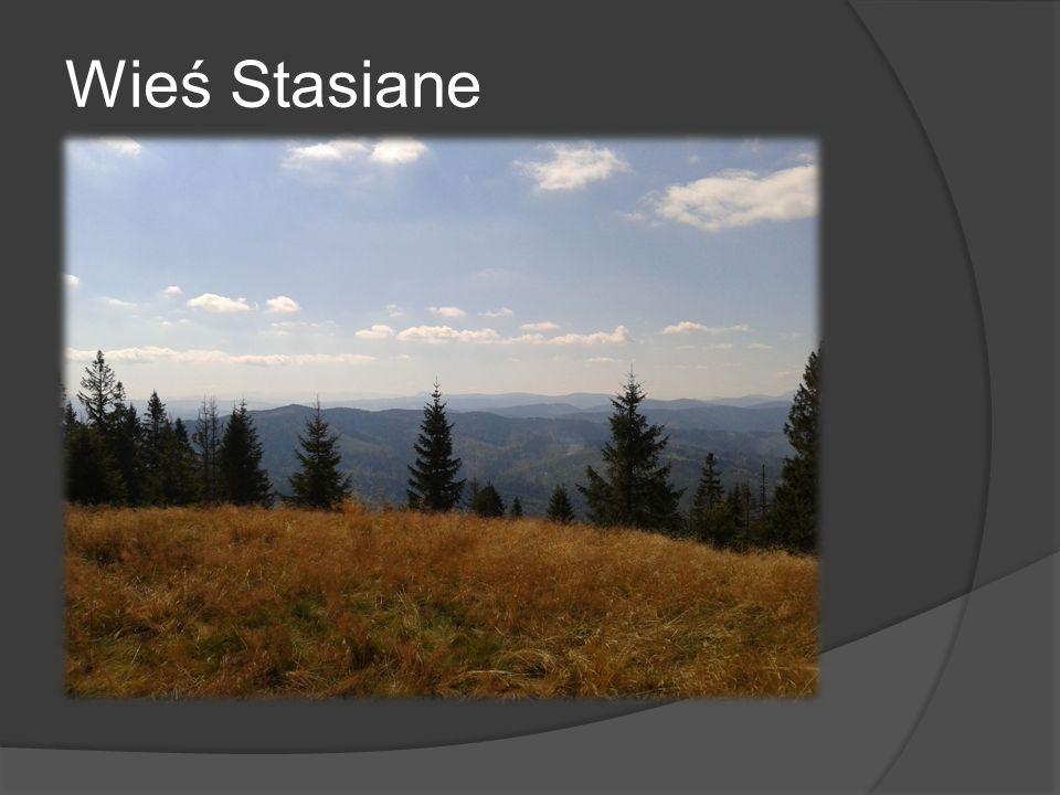 Wieś Stasiane
