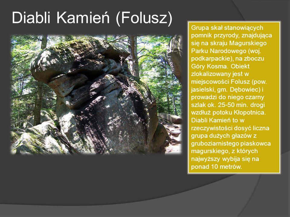 Diabli Kamień (Folusz) Grupa skał stanowiących pomnik przyrody, znajdująca się na skraju Magurskiego Parku Narodowego (woj. podkarpackie), na zboczu G