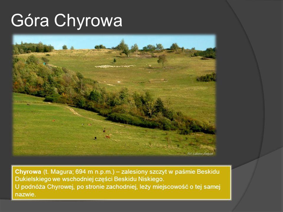 Góra Chyrowa Chyrowa (t. Magura; 694 m n.p.m.) – zalesiony szczyt w paśmie Beskidu Dukielskiego we wschodniej części Beskidu Niskiego. U podnóża Chyro